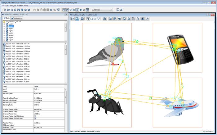 Data Viewer Eye Tracking Software