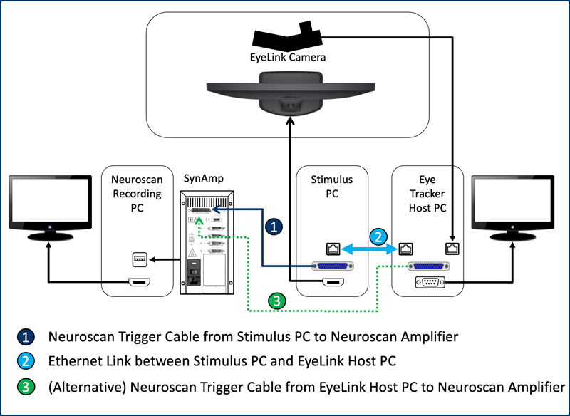 Neuroscan EEF EyeLink Eye Tracker Integration Chart