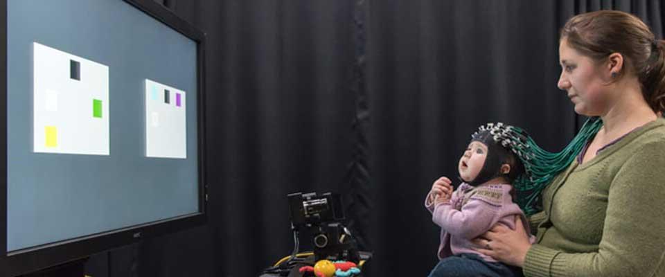 Eye Tracking EEG fNIRs Solutions