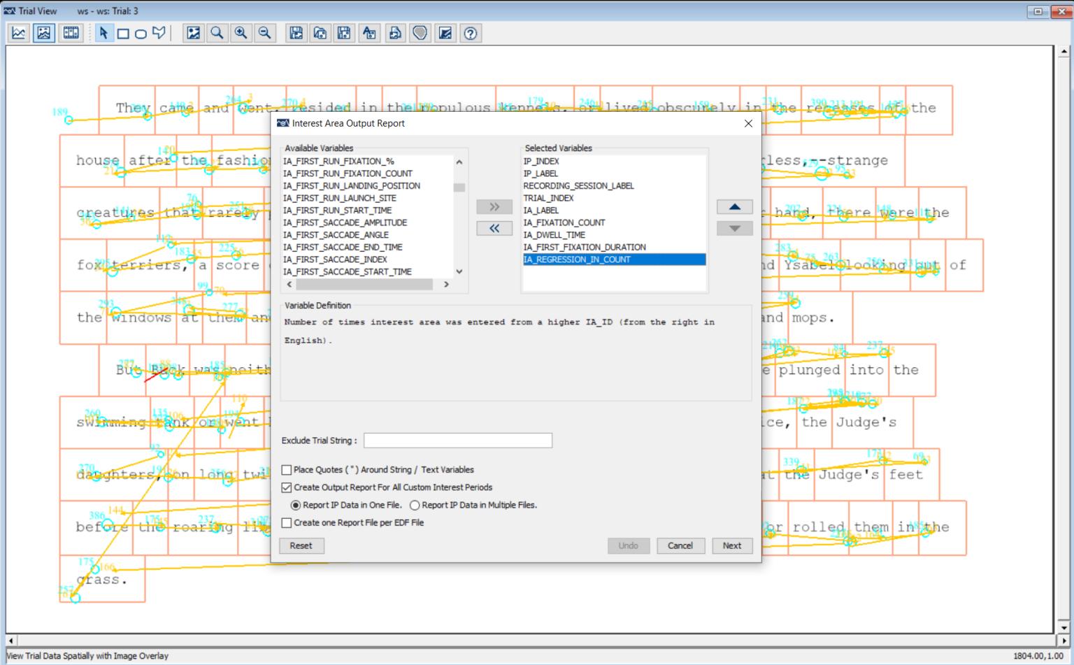 Data Viewer Eye Tracking Software - Report