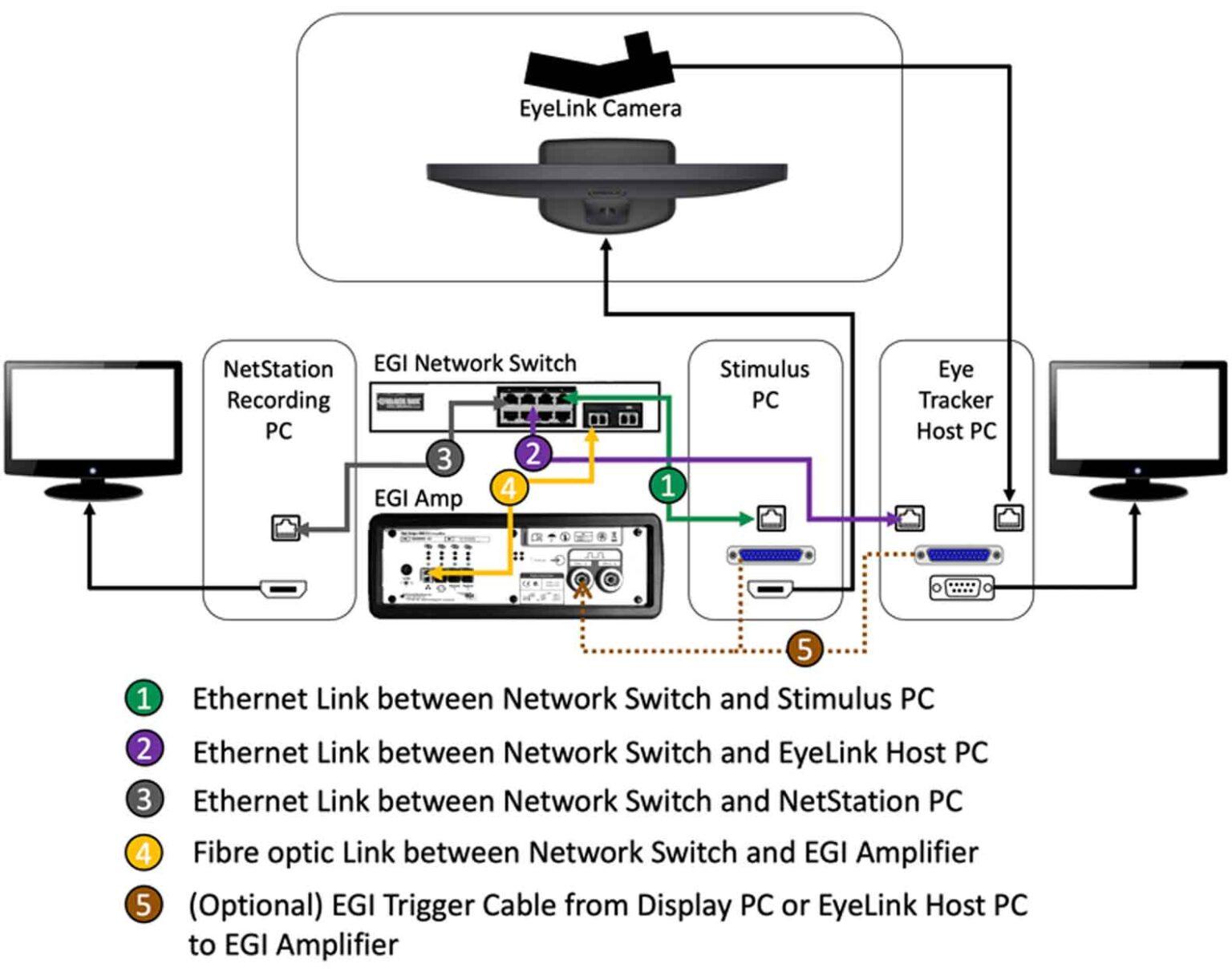 EyeLink Magstim-EGI Integration